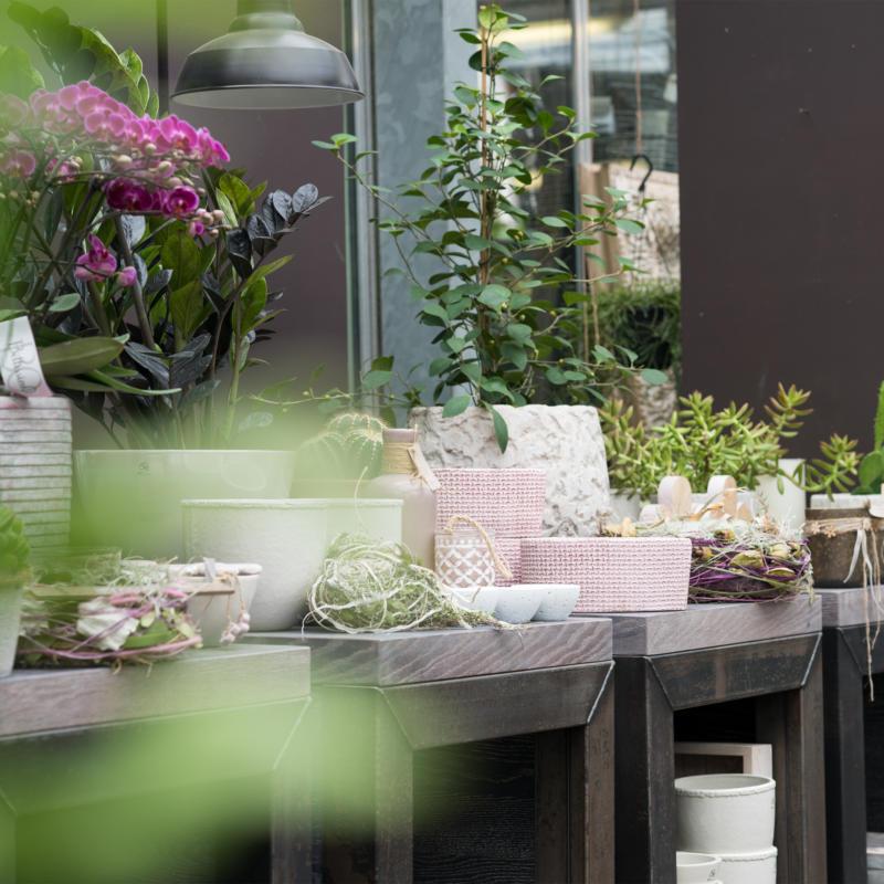 Für alles Blumige, für alles Schöne im Haus und Garten