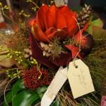 Winterimpressionen Blumeninsel 001